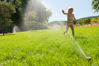 irrigation & sprinkler systems MN